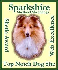 Shetla Top Notch Dog Site Award