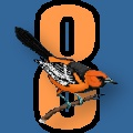 Number 8 with an Oriole